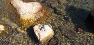 Herzen aus Stein